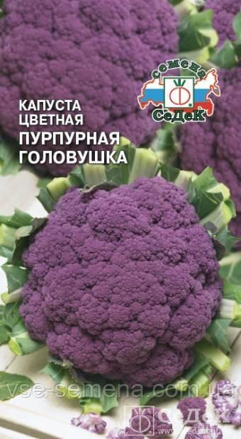 Капуста цветная Пурпурная Головушка 0,5 г (Седек)