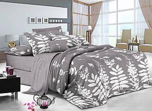 Двуспальный комплект постельного белья евро 200*220 сатин (11373) Украина