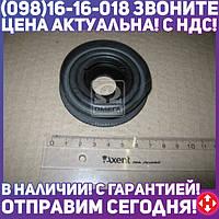 ⭐⭐⭐⭐⭐ Втулка амортизатора ХОНДА ACCORD задняя (производство  RBI)  O260033