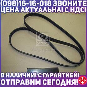 ⭐⭐⭐⭐⭐ Ремень приводной (производство  SsangYong)  6719970192