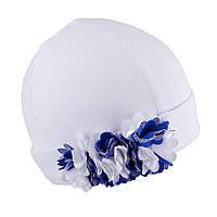 Трикотажная шапка для девочки TuTu арт. 3-002604(38-42), фото 1