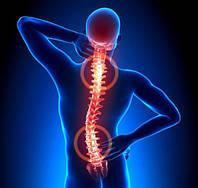 5 эффективных настоев от остеохондроза.