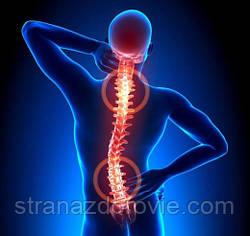 5 ефективних настоїв від остеохондрозу.