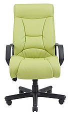 Кресло компьютерное Магистр (пластик) (с доставкой), фото 2