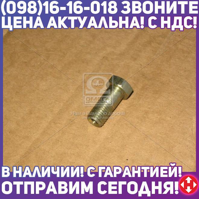 ⭐⭐⭐⭐⭐ Болт М10х1,25х23 (пр-во Россия) 870007