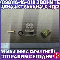 ⭐⭐⭐⭐⭐ Ремкомплект трубки ПВХ (Dнар.=5 мм , М10х1) (Дорожная Карта)  DK 0610