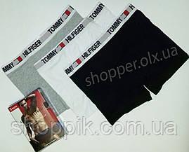 Мужские трусы Tommy Hilfiger боксеры хлопок, 3 шт. в уп.  Реплика, фото 3