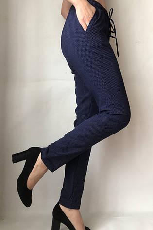 Женские летние штаны N°17 горох  (БАТАЛ) , фото 2