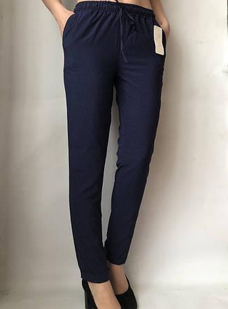 Женские летние штаны N°17С (горошек БАТАЛ), фото 2