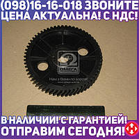 ⭐⭐⭐⭐⭐ Шестерня вала распред. ГАЗ 53 (армамид.) (производство  Украина)  511.1006020