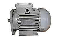 Двигатель АИР80В8, фото 1