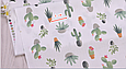 Сатин (бавовняна тканина) кактуси в горщиках, фото 3
