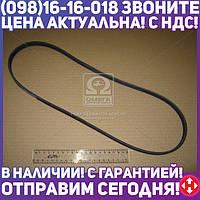 ⭐⭐⭐⭐⭐ Поликлиновой ремень (Пр-во Contitech) 4PK1070