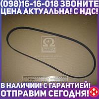 ⭐⭐⭐⭐⭐ Поликлиновой ремень (Пр-во Contitech) 4PK1102ELAST