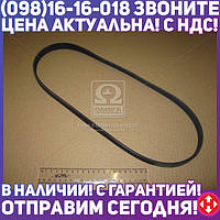 ⭐⭐⭐⭐⭐ Поликлиновой ремень (Пр-во Contitech) 5PK1000