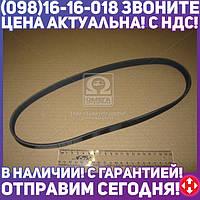 ⭐⭐⭐⭐⭐ Поликлиновой ремень (Пр-во Contitech) 5PK880