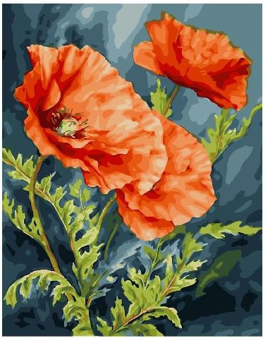Картина по номерам Нежные маки, 40x50 см., Brushme