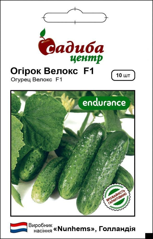 Семена огурца Велокс F1, Nunhems 10 семян (Садыба Центр)