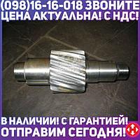 ⭐⭐⭐⭐⭐ Шестерня ведущая цилиндрическая Z=14 (производство  КамАЗ)  5320-2402110-30