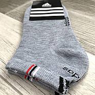Носки женские спортивные демисезонные х/б Adidas, Турция, короткие, ассорти, 06154, фото 2