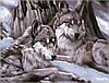 Картина по номерам на холсте Идейка Волчий взгляд KH1046