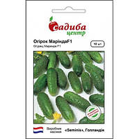 Семена огурца Ранний гибрид партенокарпик Маринда F1, Seminis 10 семян (Садыба Центр) для корнишонов