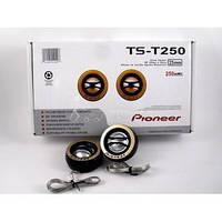 Пищалки Pioneer TS-T250