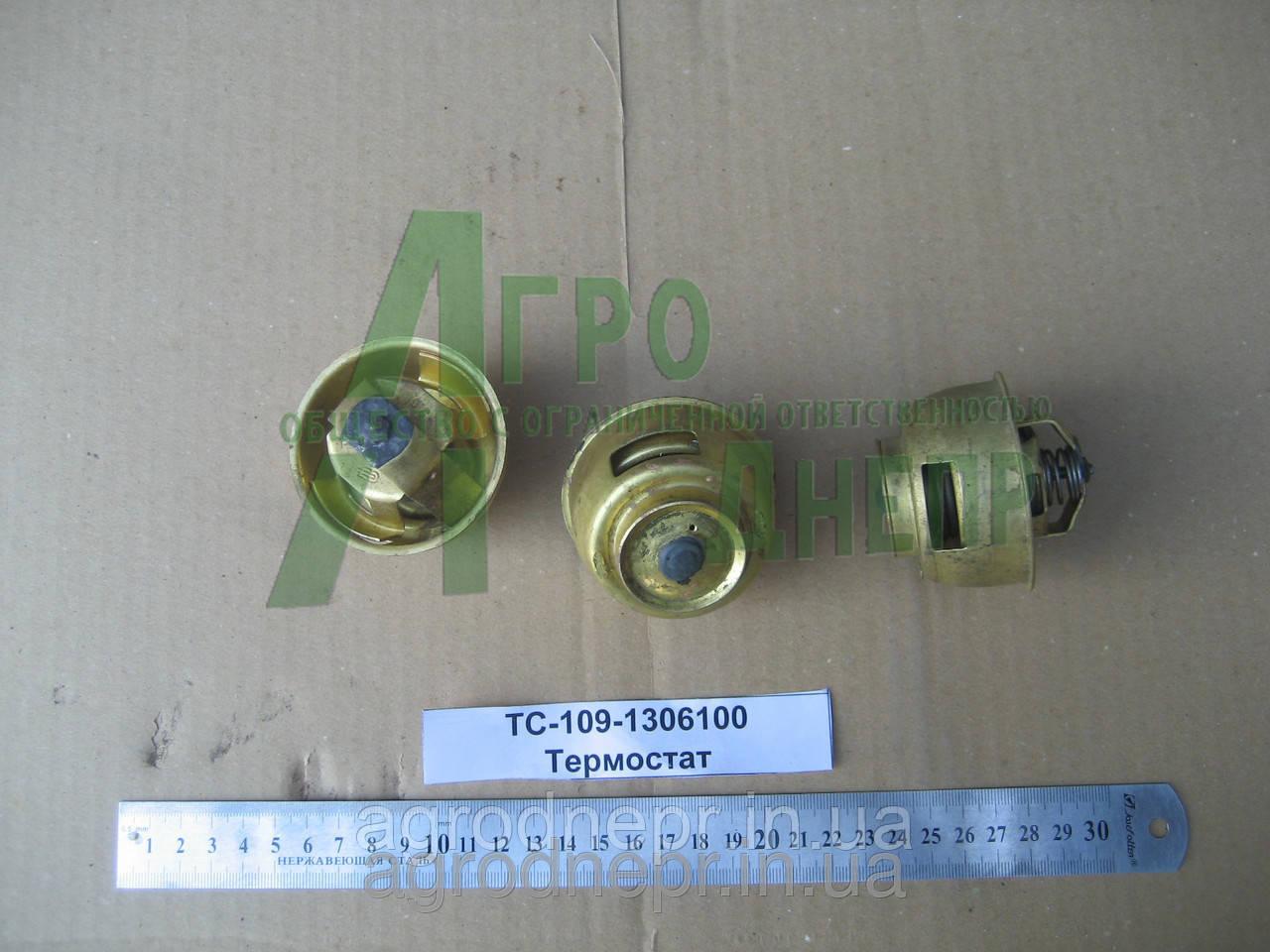 Термостат ТС-109-1306100