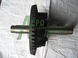 Коническая шестерня со ступицей (дифференциал ЮМЗ) 40-2403015 СБ, фото 2