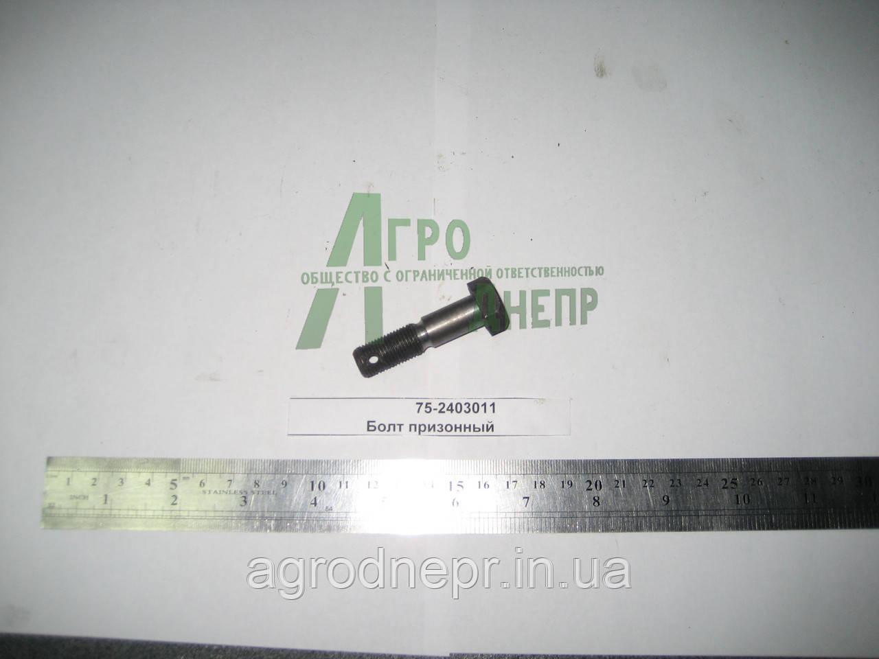 Гайка специальная ЮМЗ-80 75-2403016