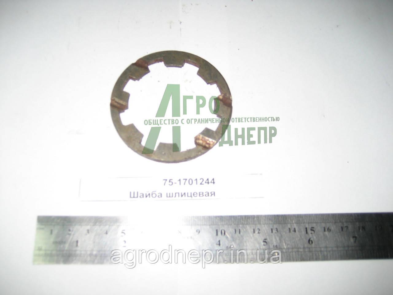 Шайба шлицева КПП ЮМЗ 8240 75-1701244