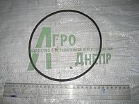 Кольцо уплотнительное резиновое ф180*5 заднего моста ЮМЗ 36-2403054