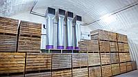 Вентиляция склада хранения фруктов