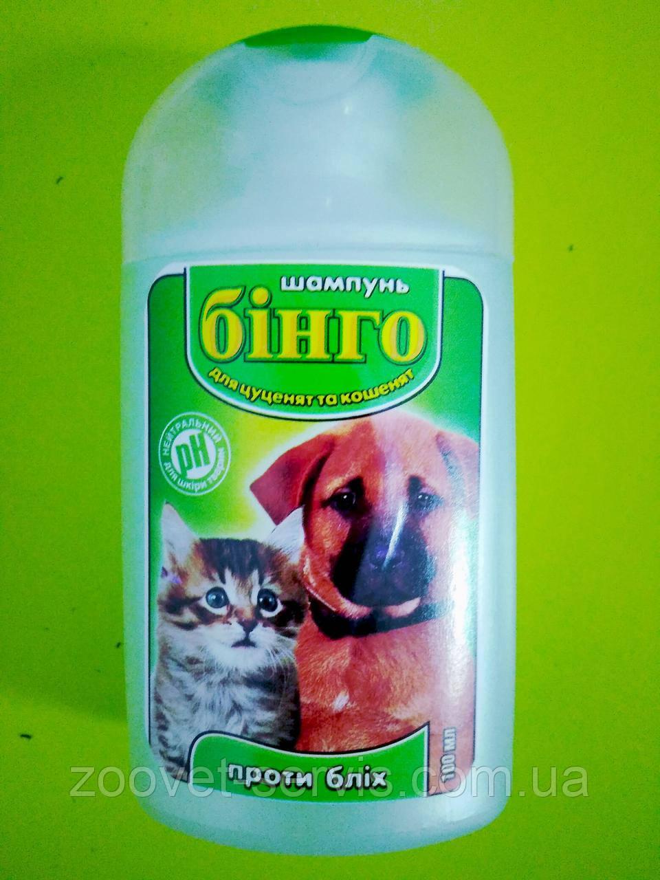Шампунь от блох для щенков и котят Бинго