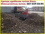 Подрібнювач гілок оренда + дві людини Київ, фото 5