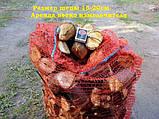 Подрібнювач гілок оренда + дві людини Київ, фото 9