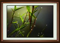 """Элегантная картина """"Сияние росы"""" кристаллами Сваровски ручная работа"""