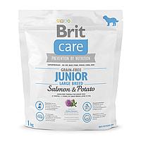 Сухой корм для щенков и молодых собак крупных пород (весом от 25 кг) Brit Care GF Junior Large Breed Salmon & Potato 1 кг (лосось)