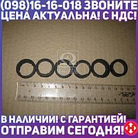 ⭐⭐⭐⭐⭐ Ремкомплект уплотнения форсунок двигателя Д-260 (МТЗ-1221) (Руслан-Комплект)  Р/К-2116