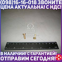 ⭐⭐⭐⭐⭐ Винт М5х20 кожуха руля ВАЗ 2101, 2102, 2103, 2104, 2105, 2106, 2107 (производство  Белебей)  1/33112/01