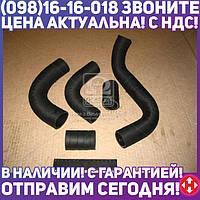 ⭐⭐⭐⭐⭐ Патрубок радиатора ГАЗ 3102 ( двигатель 406) 5шт. (пр-во г.Волжский) 3102-1303000-06