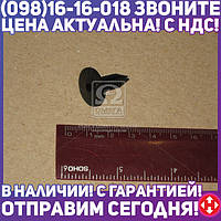 ⭐⭐⭐⭐⭐ Гнездо пистона ГАЗ 3302 (для компл карт 055611) (бренд  ГАЗ)  3302-5602156
