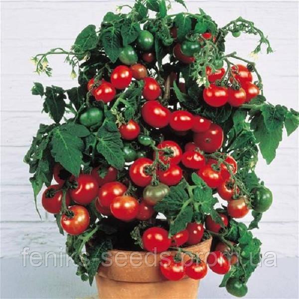 Семена Томат Черри красный