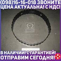 ⭐⭐⭐⭐⭐ Кольцо проставочное КАМАЗ (Дорожная Карта)  5320-3101095