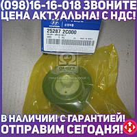 ⭐⭐⭐⭐⭐ Ролик обводной общего ремня (пр-во Mobis) 252872C000