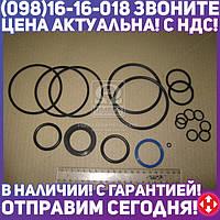⭐⭐⭐⭐⭐ Ремкомплект гидроцилиндра С-100 (производство  Гидросила)  ВРК С 100