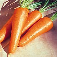 Морковь Ред Коред Lark Seeds 0,5 кг