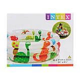 Детский надувной бассейн «Динозаврики» Intex 57106, детские бассейны Интекс, фото 3