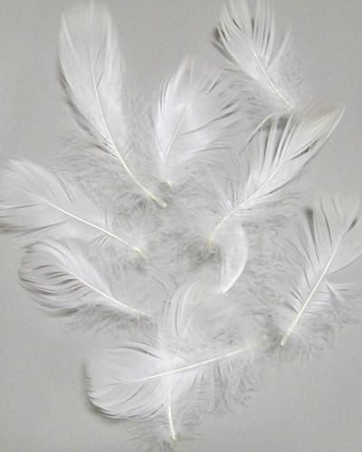 Перья декоративные 6-12 см-110 шт., белые