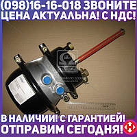 ⭐⭐⭐⭐⭐ Камера торм. Тип 24/30 с пружинным энергоакк STANDARD (RIDER)  RD 99.25.018